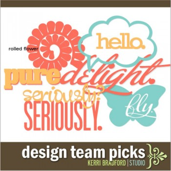 Design Team Picks