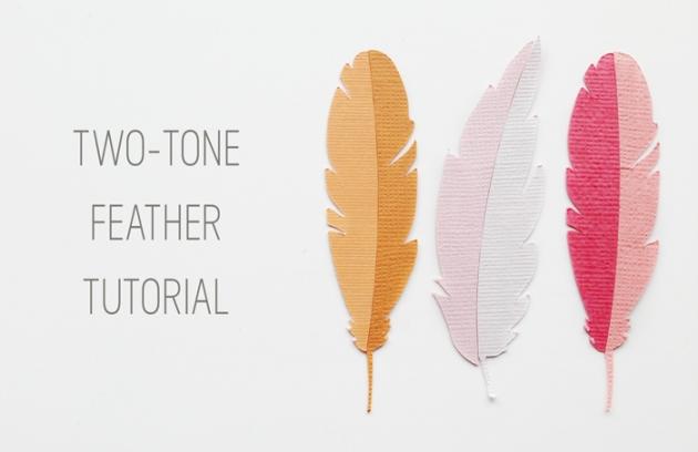 feathers-web2