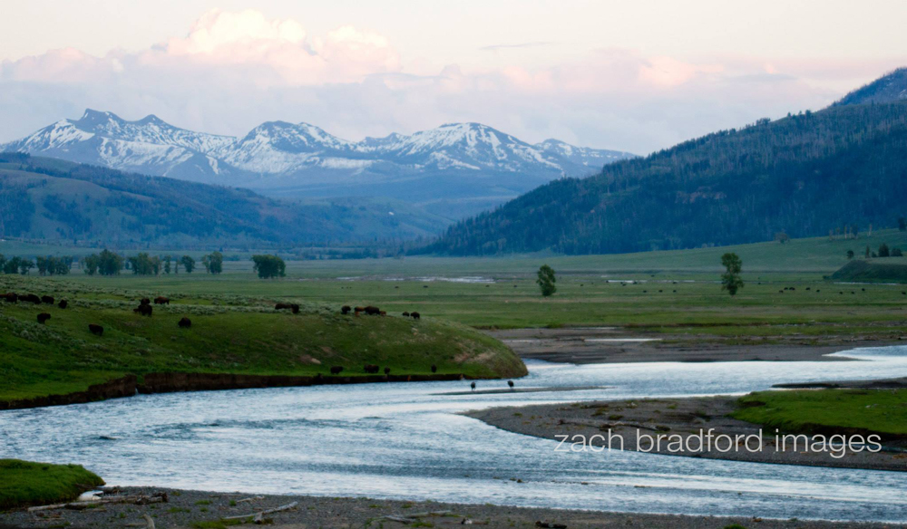 yellowstone_landscape4