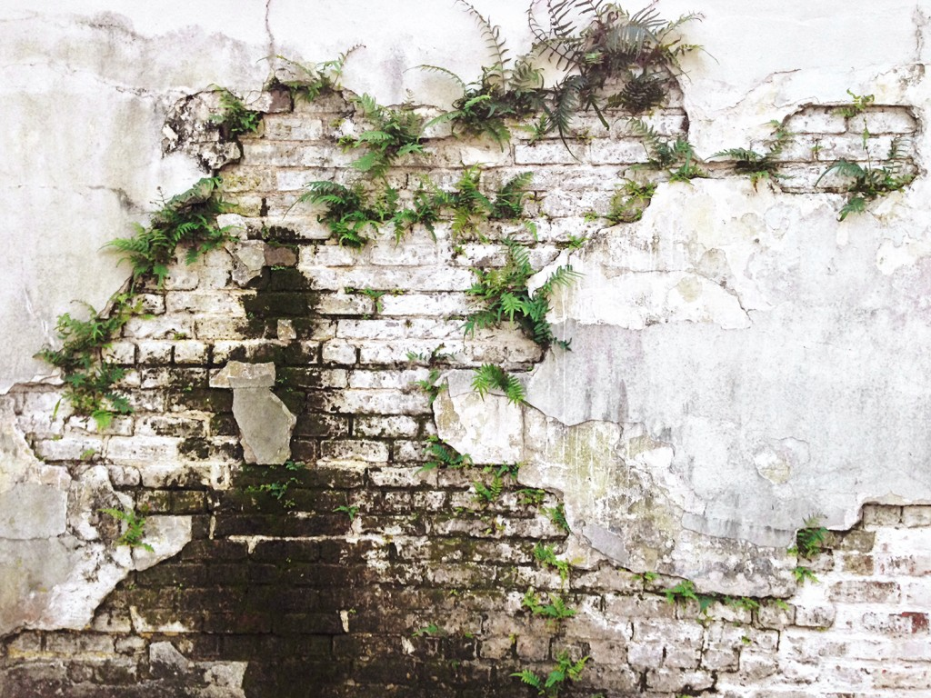 cemetery wall 5