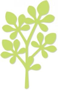 leafy_twig_ex